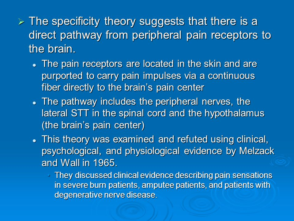 The specificity theory suggests that there is a direct pathway from peripheral pain receptors to the brain.