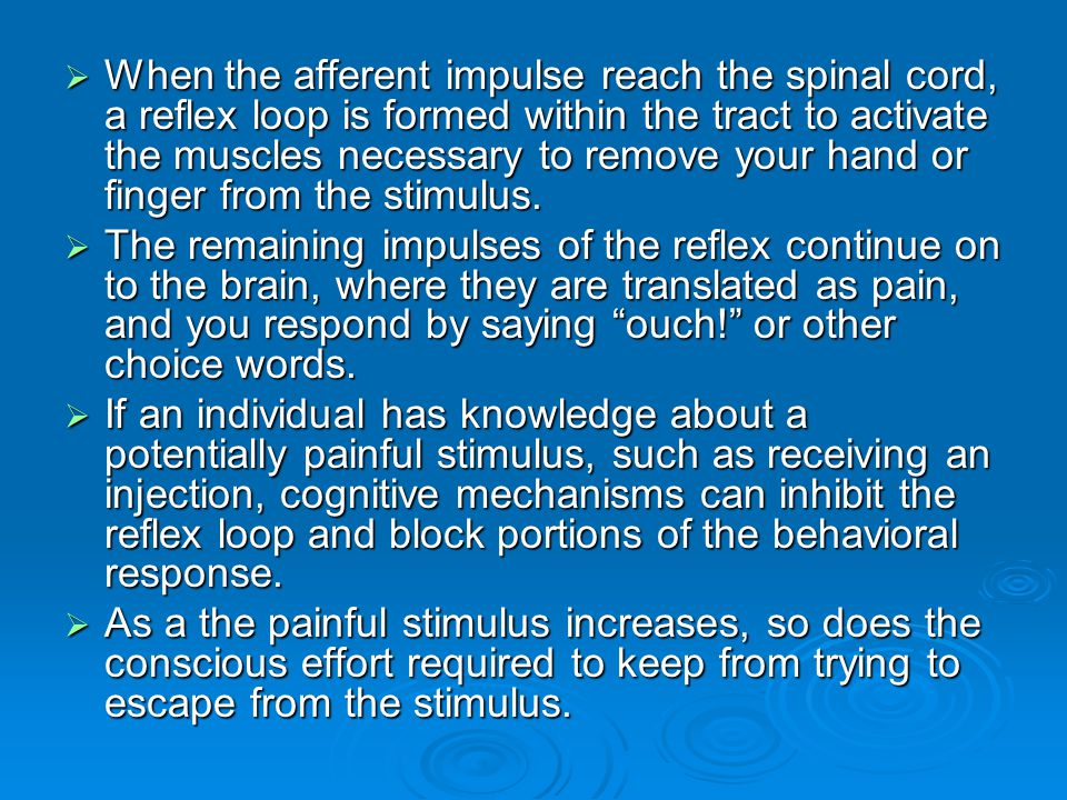 When the afferent impulse reach the spinal cord, a reflex loop is formed within the tract to activate the muscles necessary to remove your hand or finger from the stimulus.