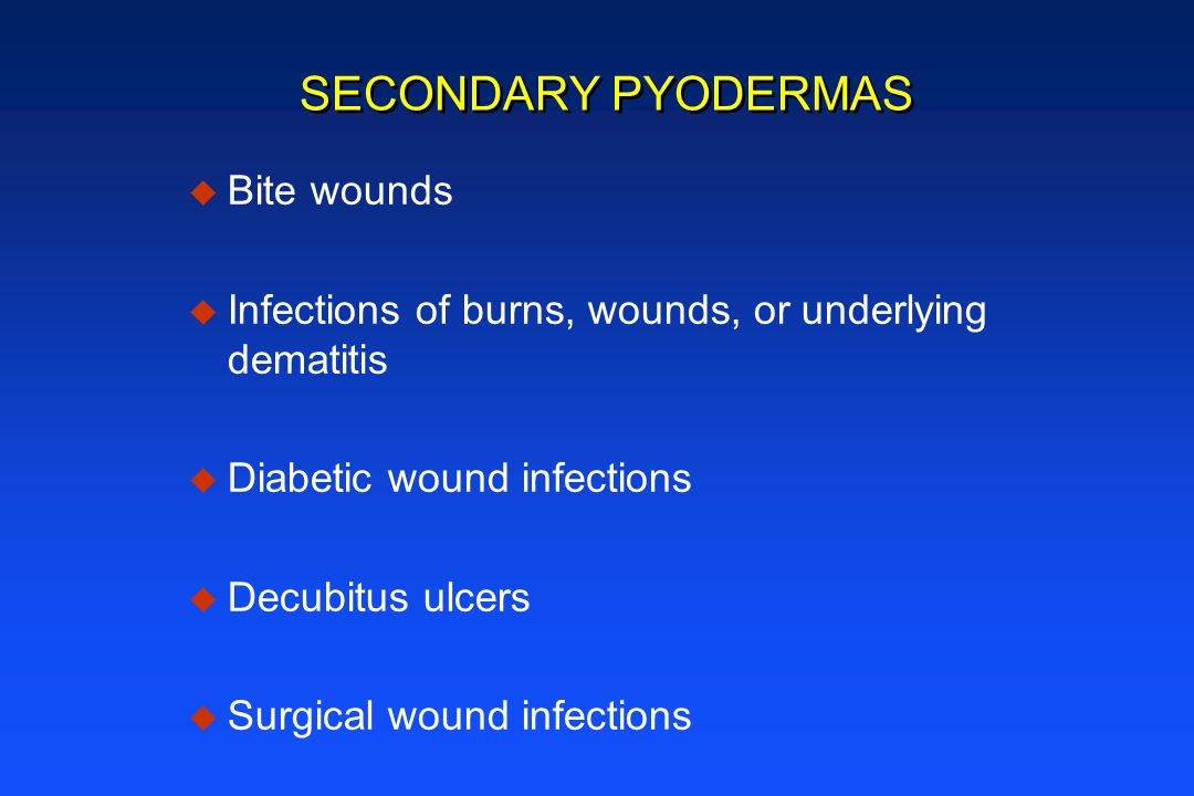 SECONDARY PYODERMAS Bite wounds