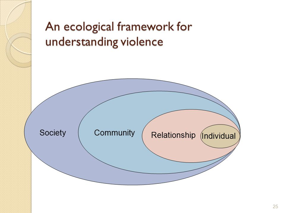An ecological framework for understanding violence