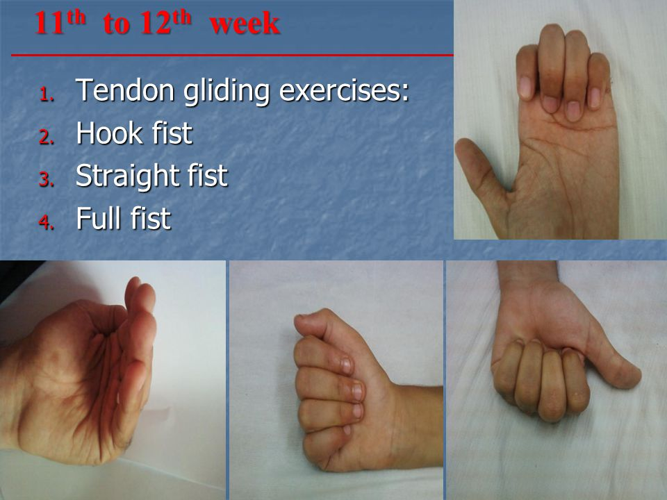 11th to 12th week Tendon gliding exercises: Hook fist Straight fist