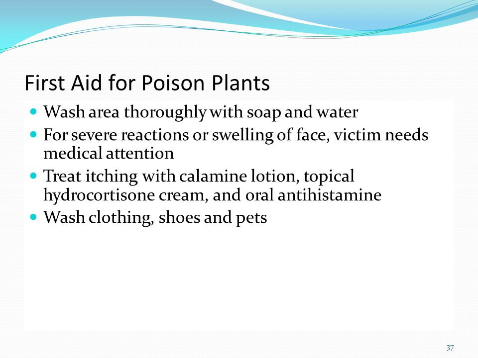 First Aid for Poison Plants