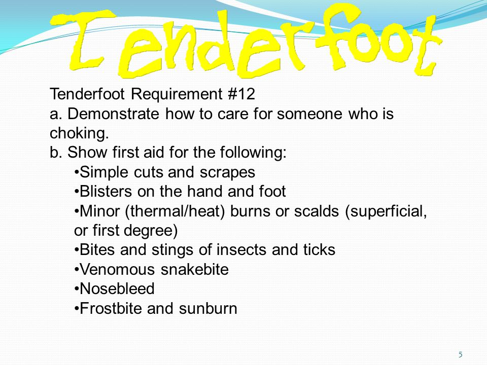 Tenderfoot Requirement #12