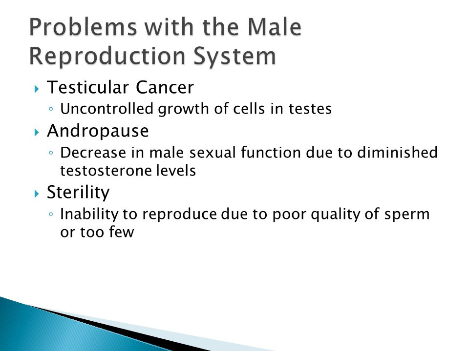 Problems with the Male Reproduction System