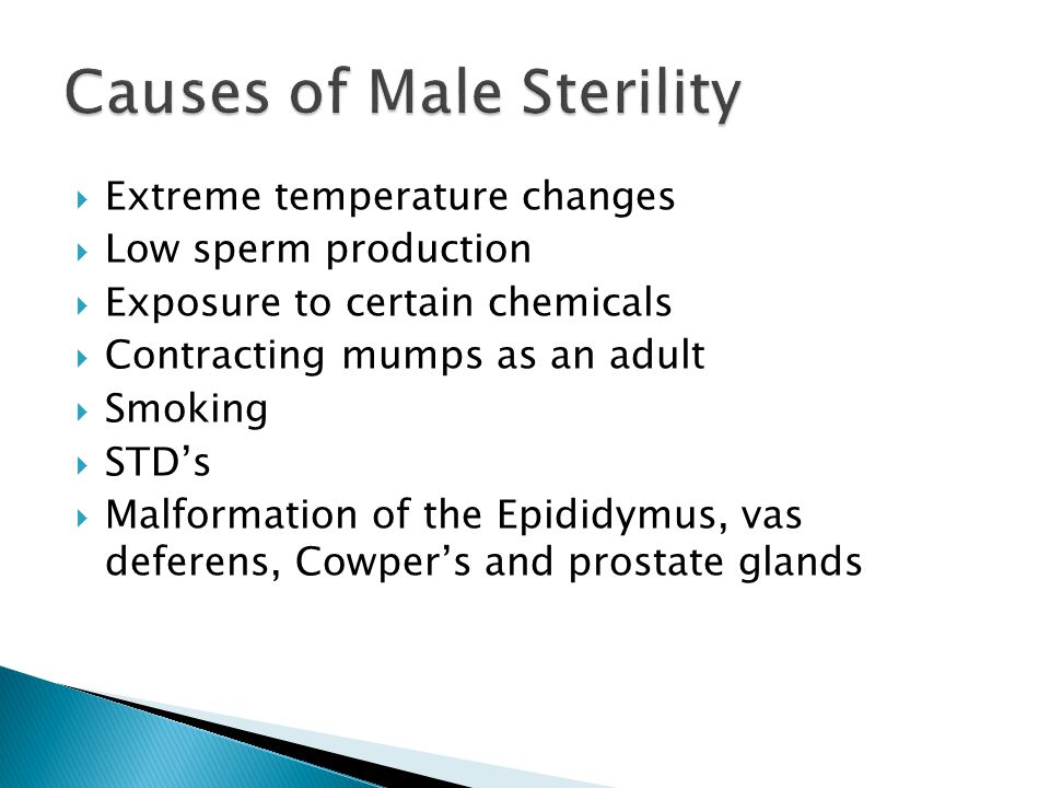 Causes of Male Sterility