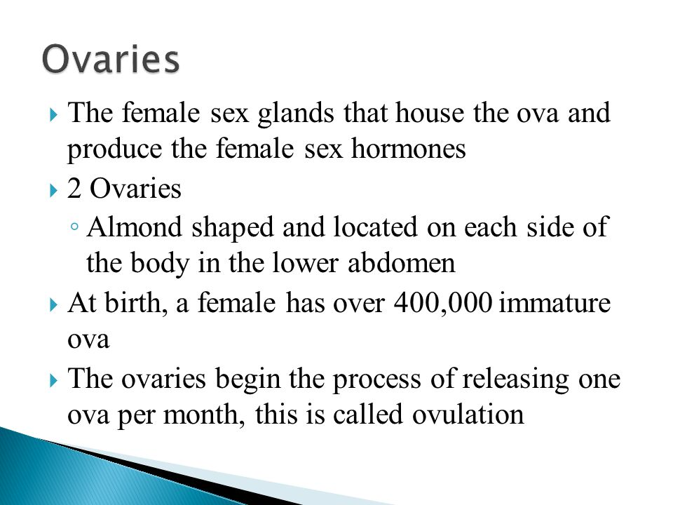 Ovaries The female sex glands that house the ova and produce the female sex hormones. 2 Ovaries.