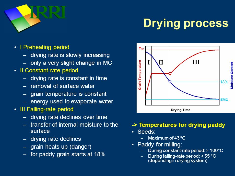 Drying process I Preheating period drying rate is slowly increasing