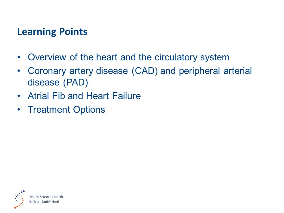Learning Points Overview of the heart and the circulatory system