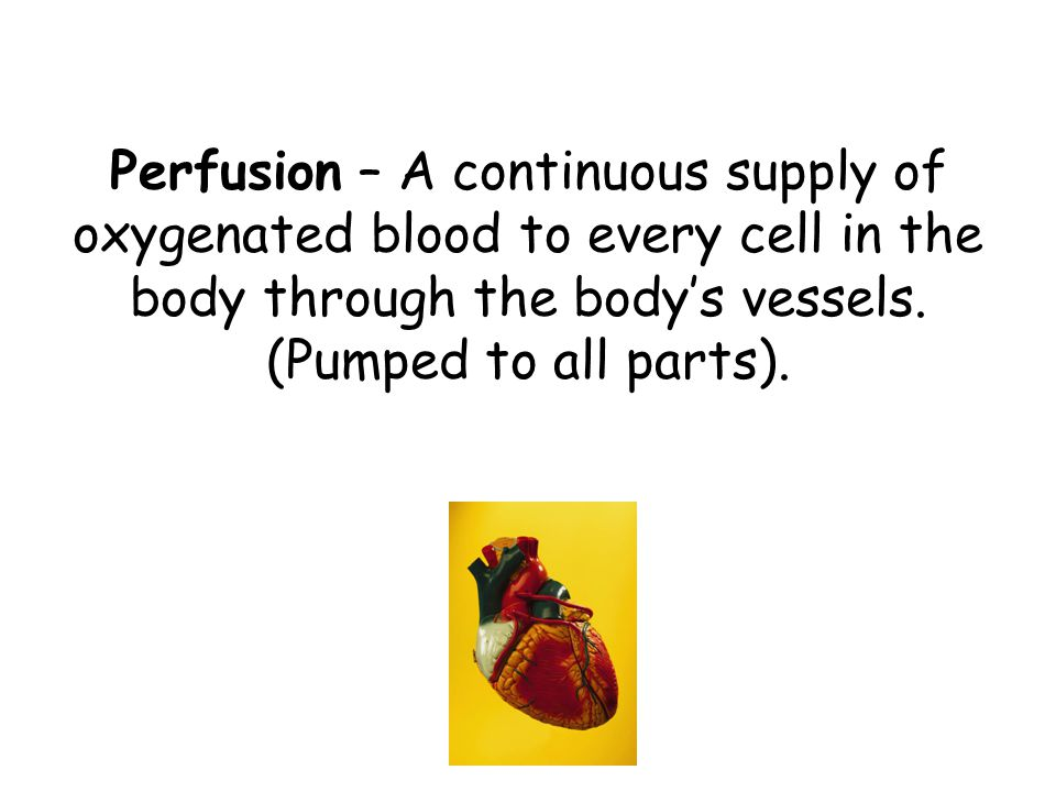 Perfusion – A continuous supply of oxygenated blood to every cell in the body through the body's vessels.