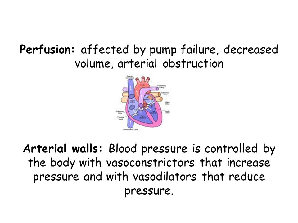 Perfusion: affected by pump failure, decreased volume, arterial obstruction Arterial walls: Blood pressure is controlled by the body with vasoconstrictors that increase pressure and with vasodilators that reduce pressure.
