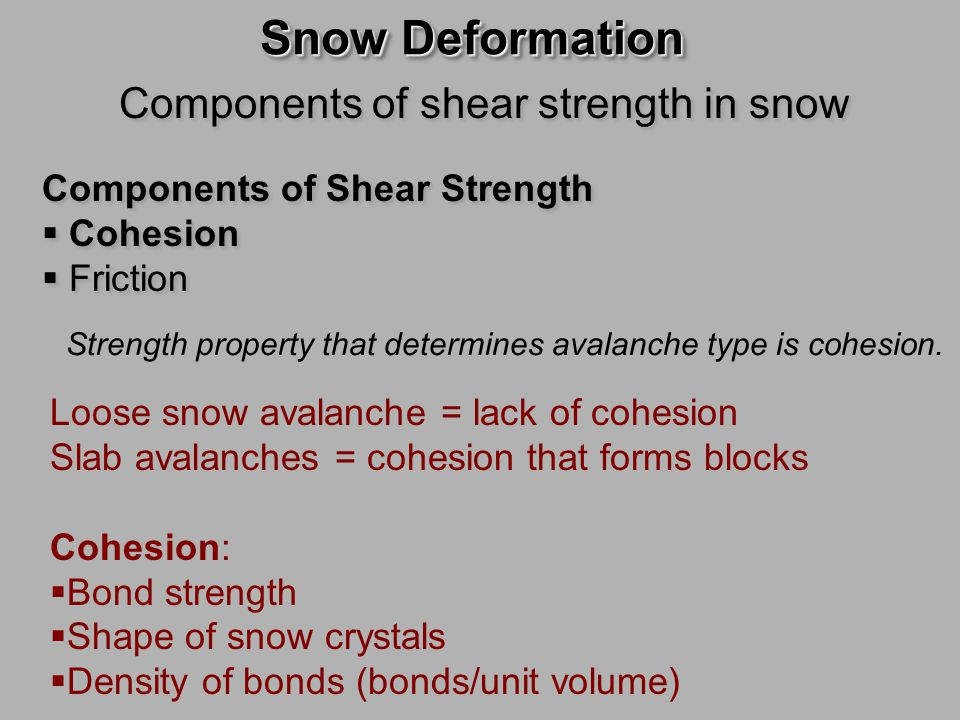 Components of shear strength in snow