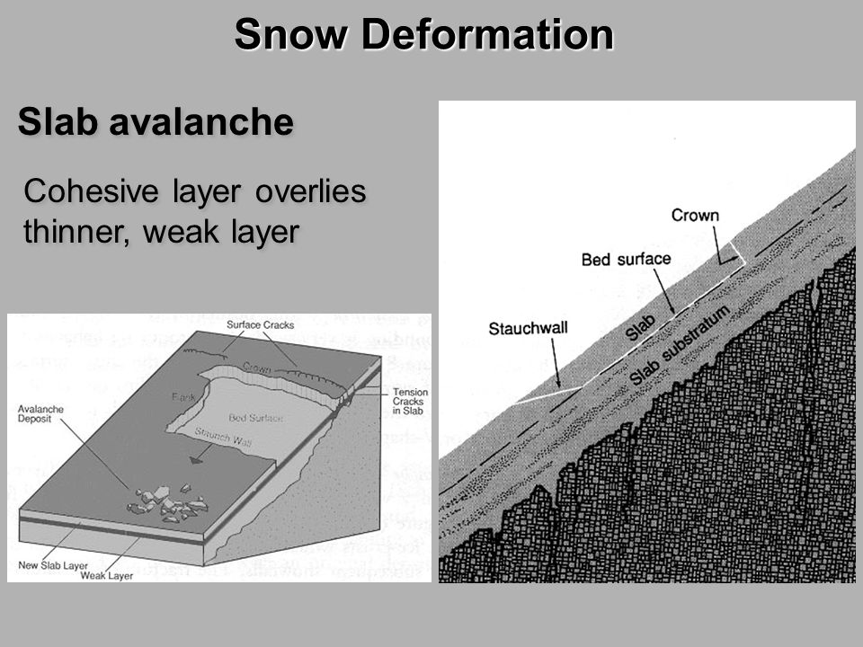 Snow Deformation Slab avalanche Cohesive layer overlies