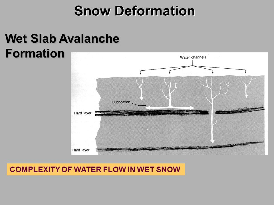 Snow Deformation Wet Slab Avalanche Formation