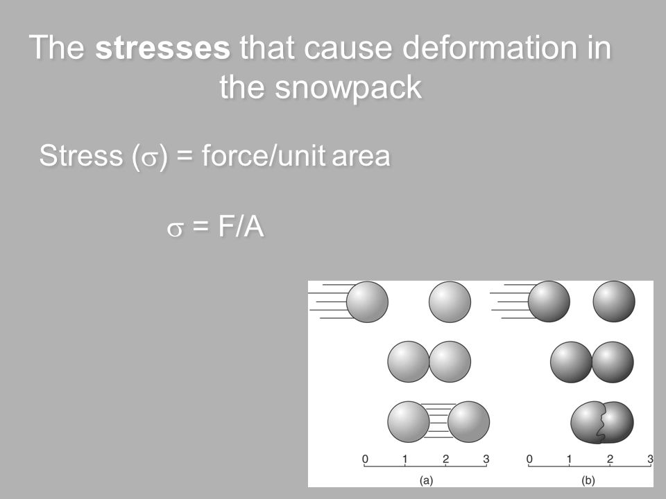 The stresses that cause deformation in the snowpack