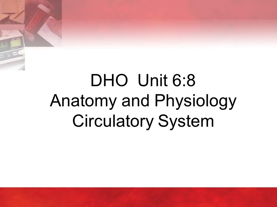 DHO Unit 6:8 Anatomy and Physiology Circulatory System