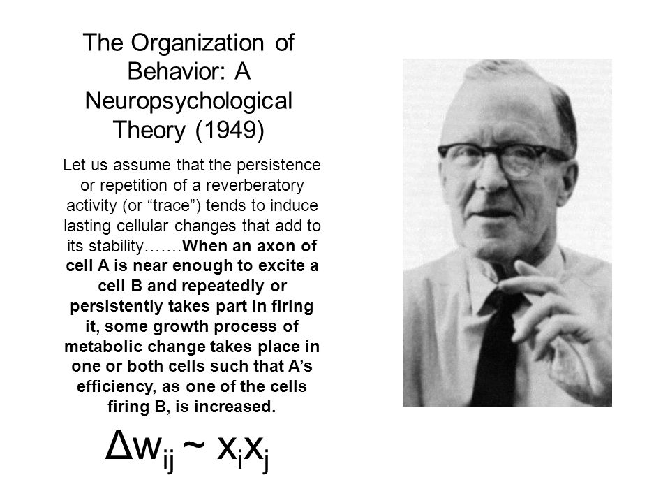 The Organization of Behavior: A Neuropsychological Theory (1949)