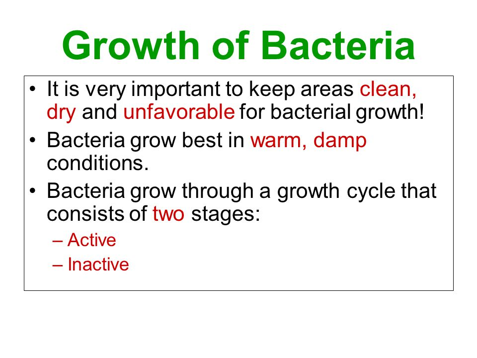 Growth of Bacteria It is very important to keep areas clean, dry and unfavorable for bacterial growth!