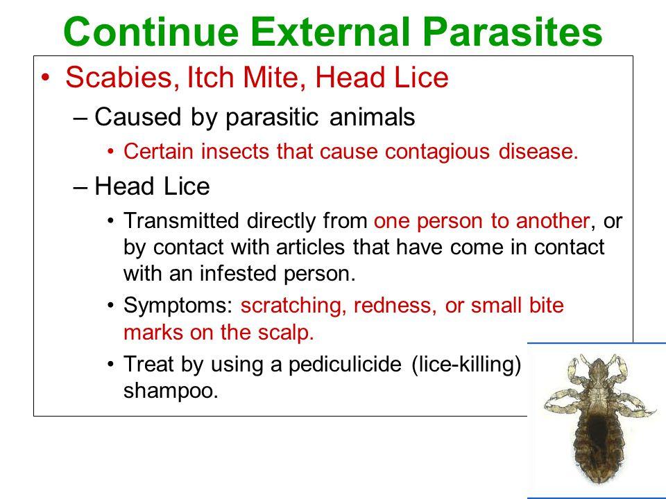 Continue External Parasites