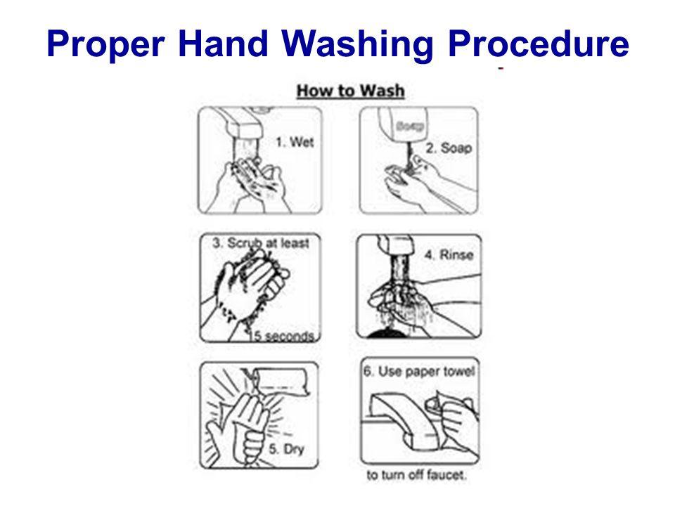 Proper Hand Washing Procedure