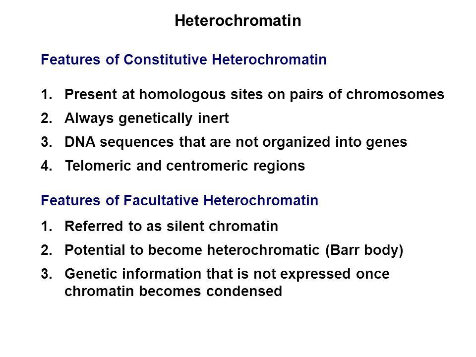 Heterochromatin Features of Constitutive Heterochromatin