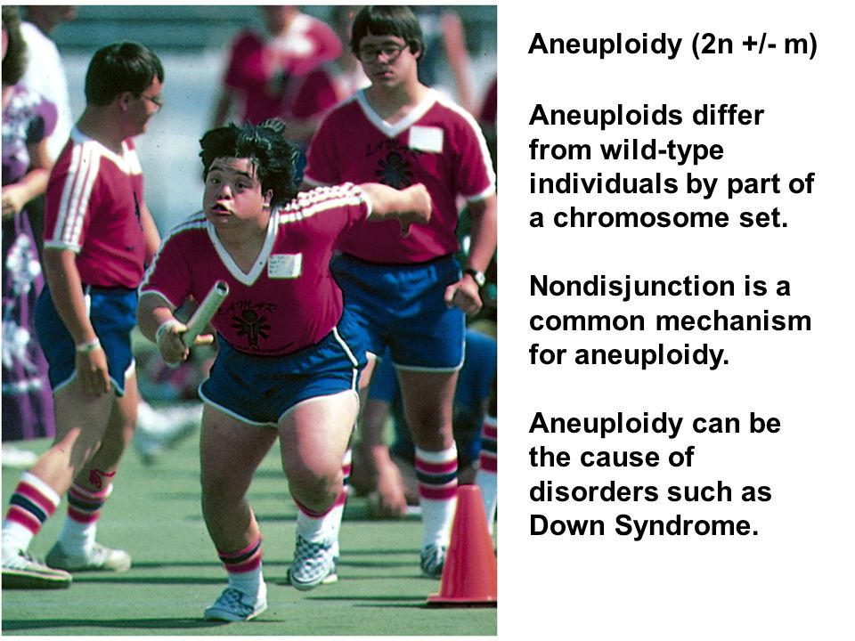 Aneuploidy (2n +/- m) Aneuploids differ from wild-type individuals by part of a chromosome set. Nondisjunction is a common mechanism for aneuploidy.