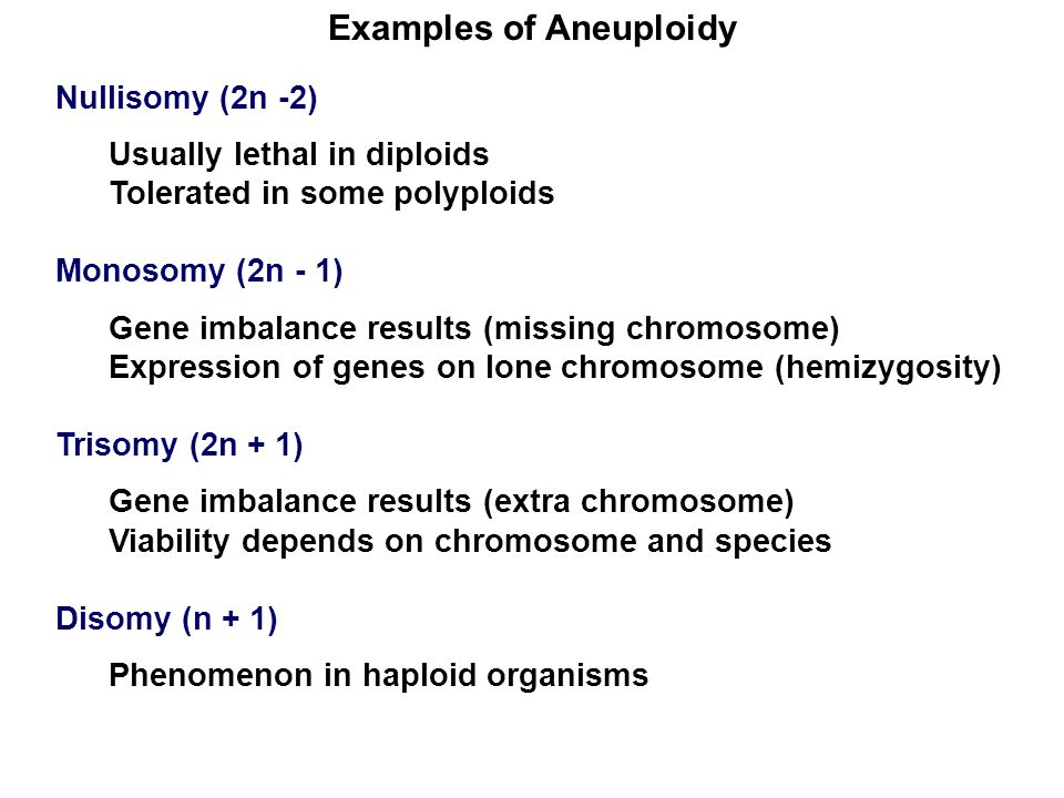 Examples of Aneuploidy