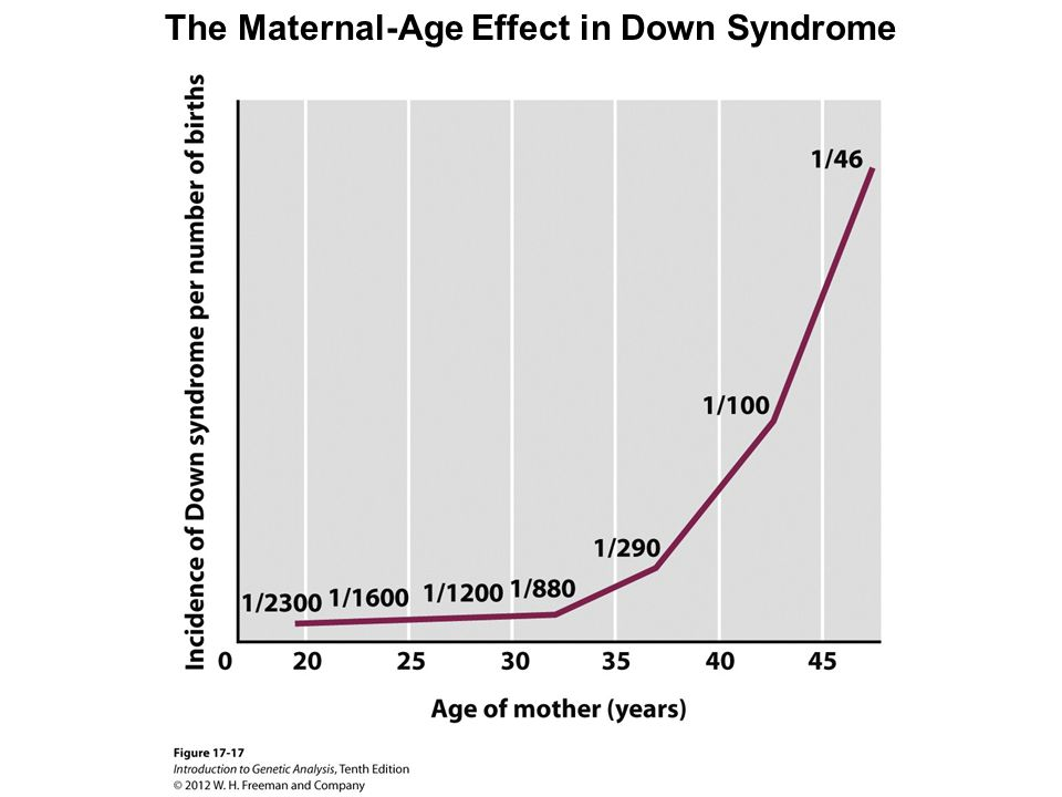 The Maternal-Age Effect in Down Syndrome