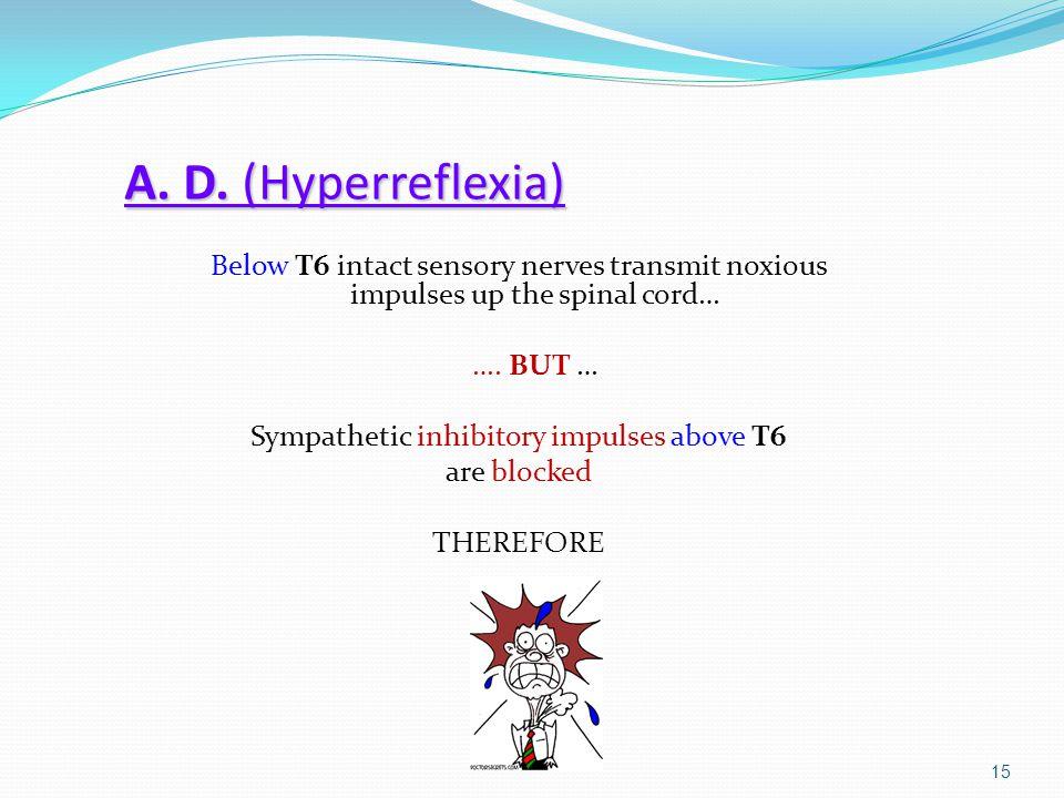 Sympathetic inhibitory impulses above T6