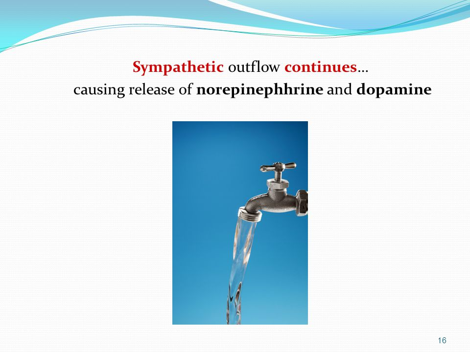 Sympathetic outflow continues… causing release of norepinephhrine and dopamine