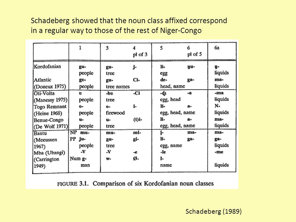Schadeberg showed that the noun class affixed correspond in a regular way to those of the rest of Niger-Congo