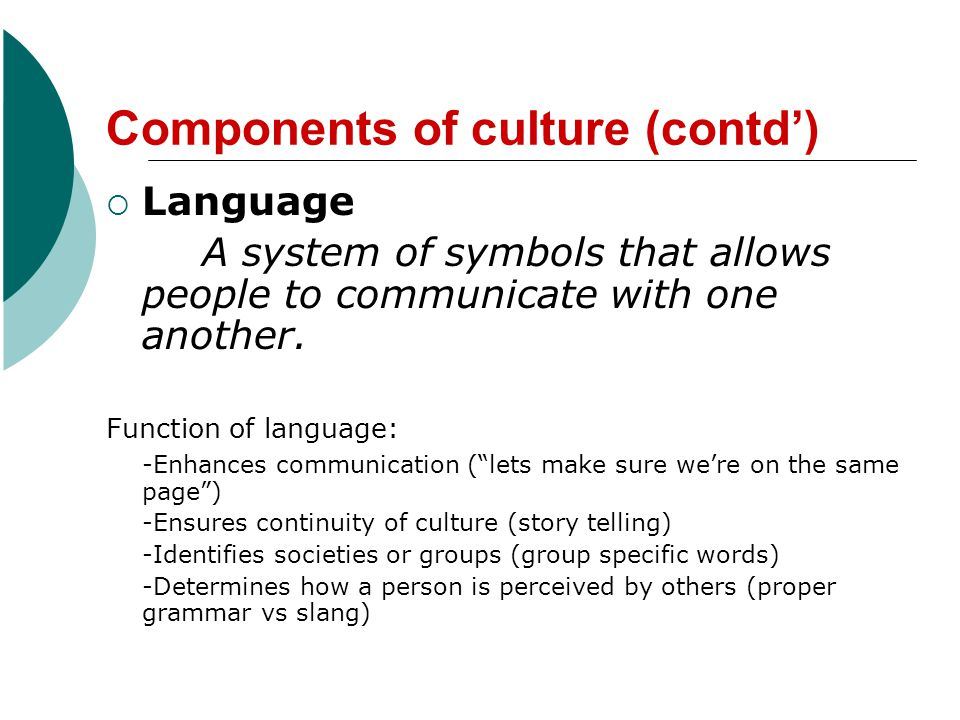 Components of culture (contd')