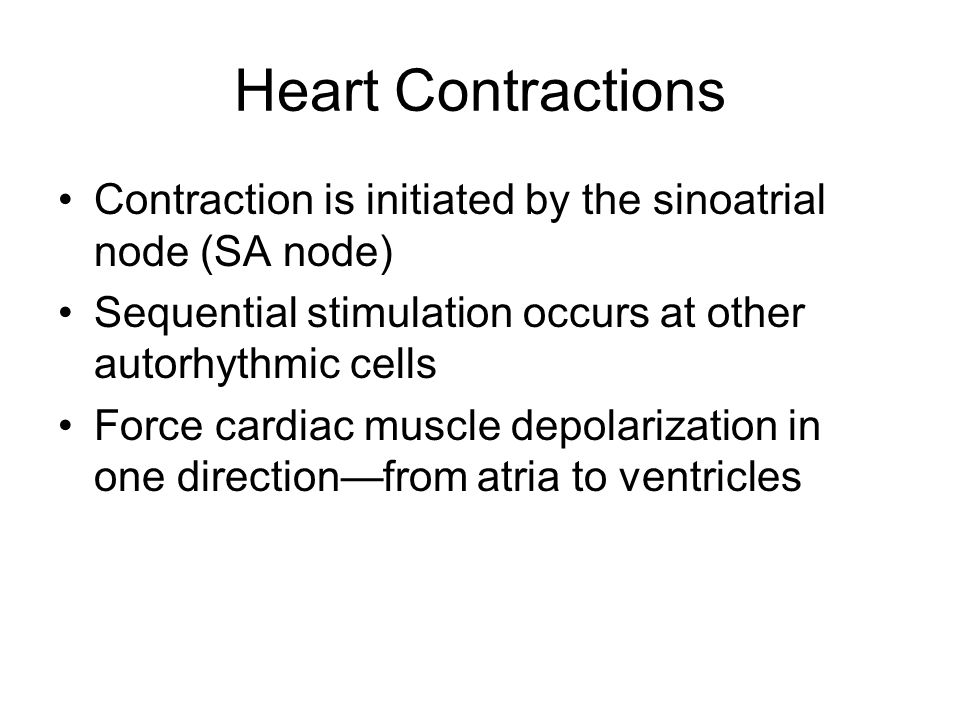 Heart Contractions Contraction is initiated by the sinoatrial node (SA node) Sequential stimulation occurs at other autorhythmic cells.