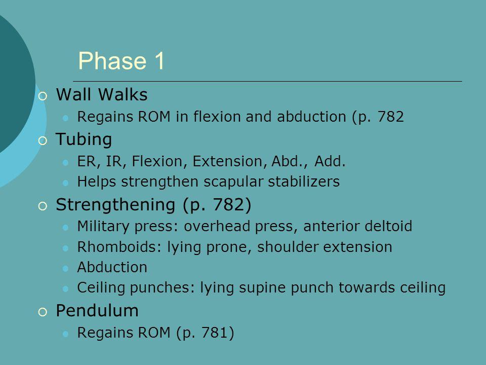 Phase 1 Wall Walks Tubing Strengthening (p. 782) Pendulum