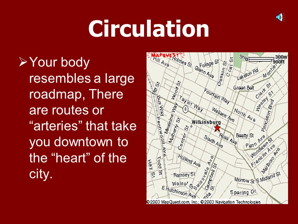 Circulation Your body resembles a large roadmap, There are routes or arteries that take you downtown to the heart of the city.