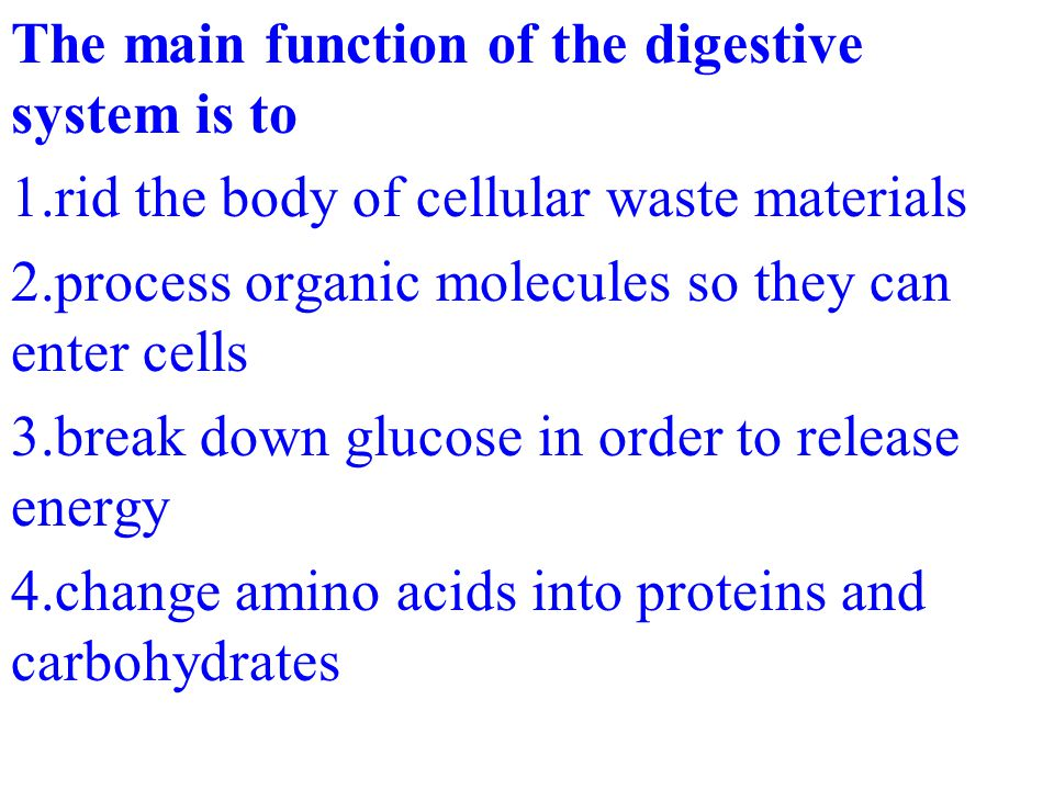 The main function of the digestive system is to