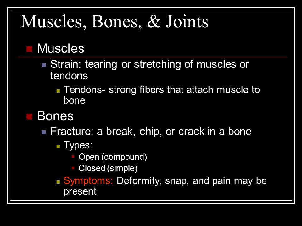Muscles, Bones, & Joints Muscles Bones