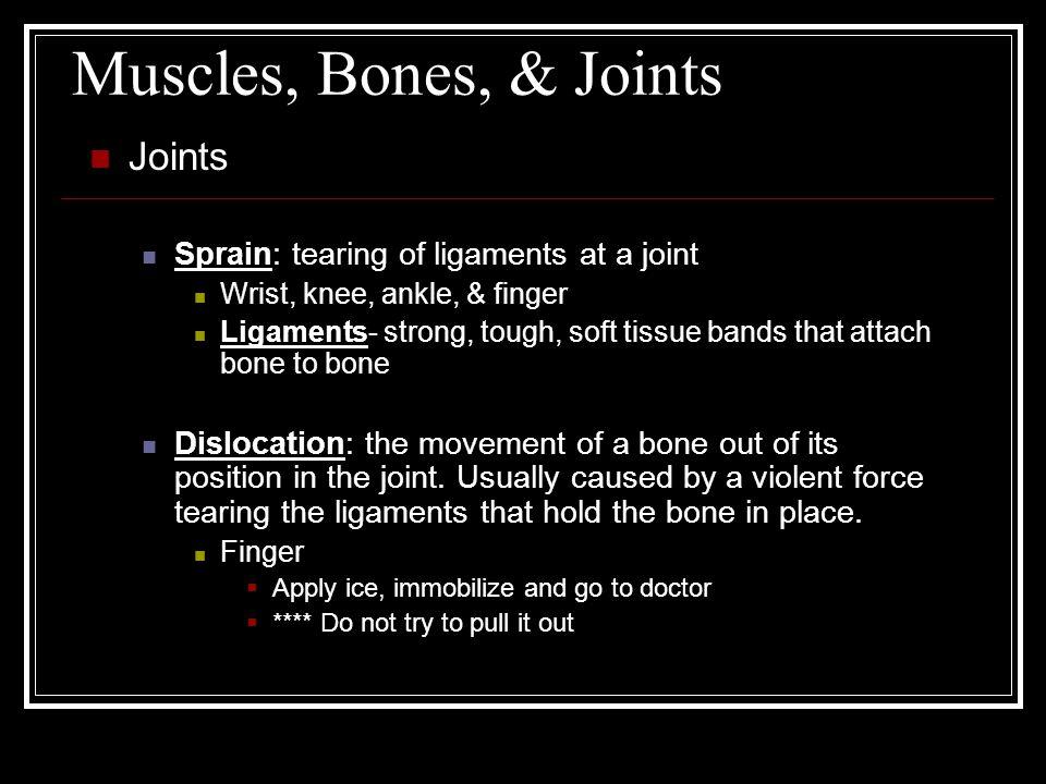 Muscles, Bones, & Joints Joints