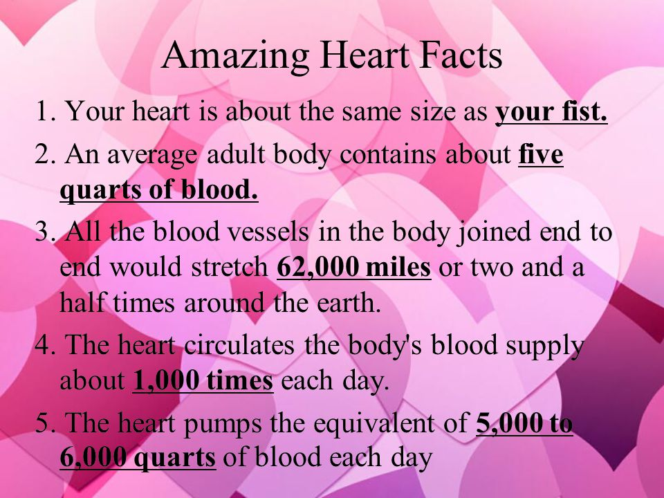 Amazing Heart Facts 1. Your heart is about the same size as your fist.