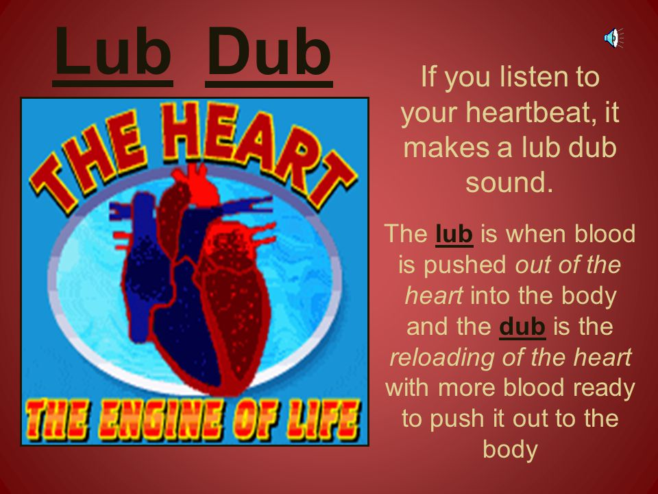 If you listen to your heartbeat, it makes a lub dub sound.