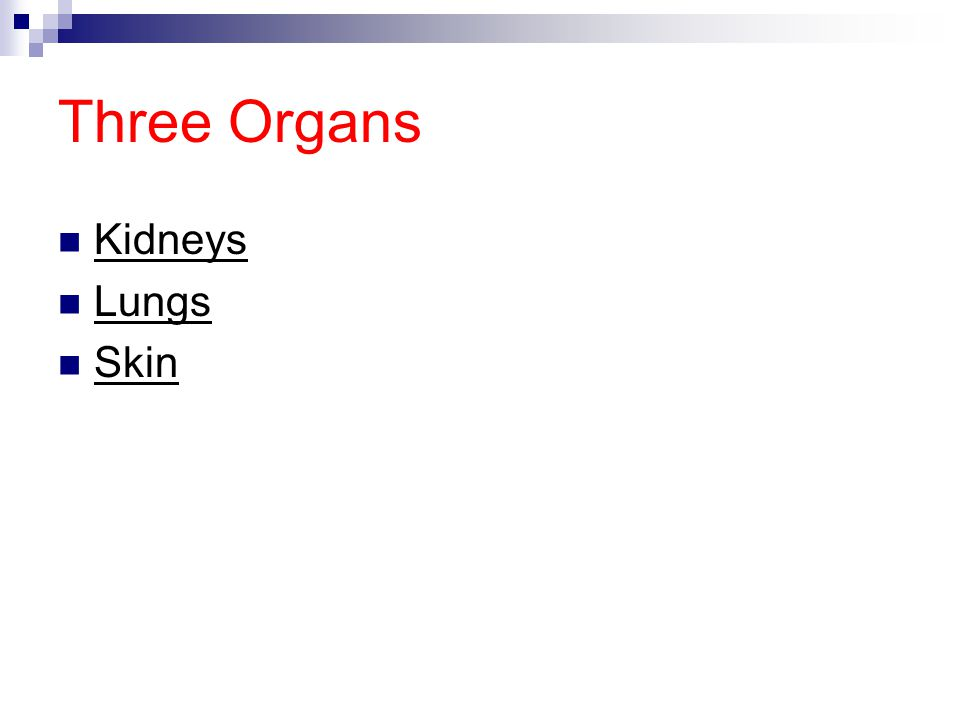 Three Organs Kidneys Lungs Skin