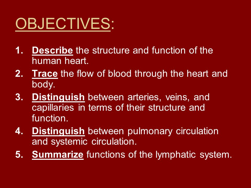 OBJECTIVES: Describe the structure and function of the human heart.