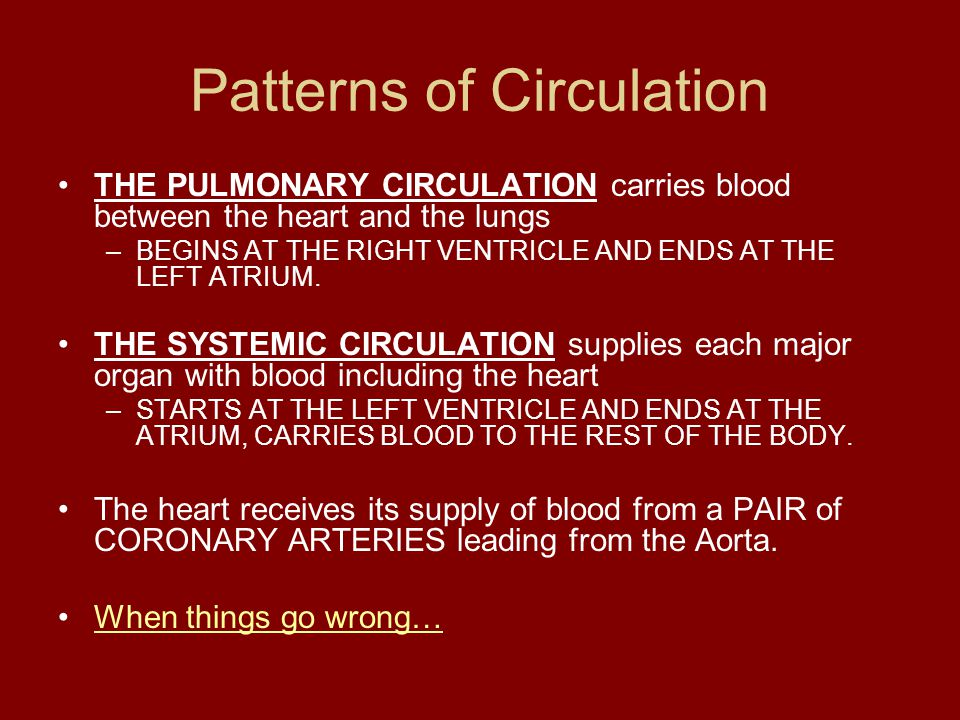 Patterns of Circulation
