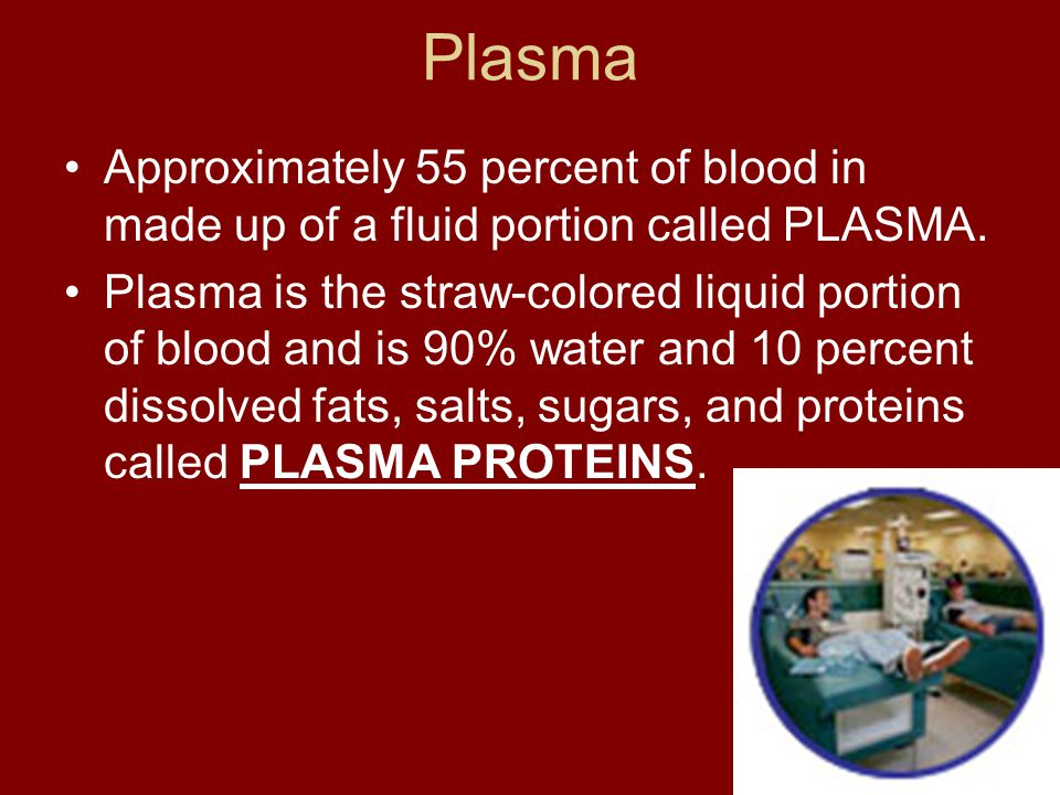 Plasma Approximately 55 percent of blood in made up of a fluid portion called PLASMA.