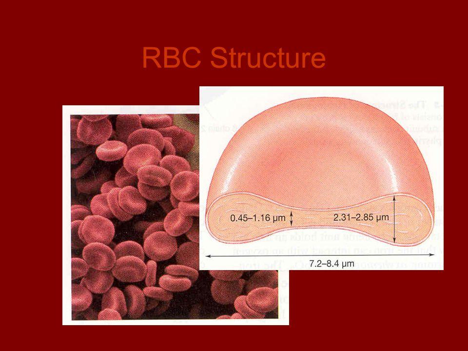 RBC Structure