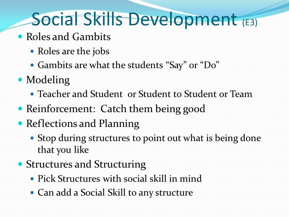 Social Skills Development (E3)