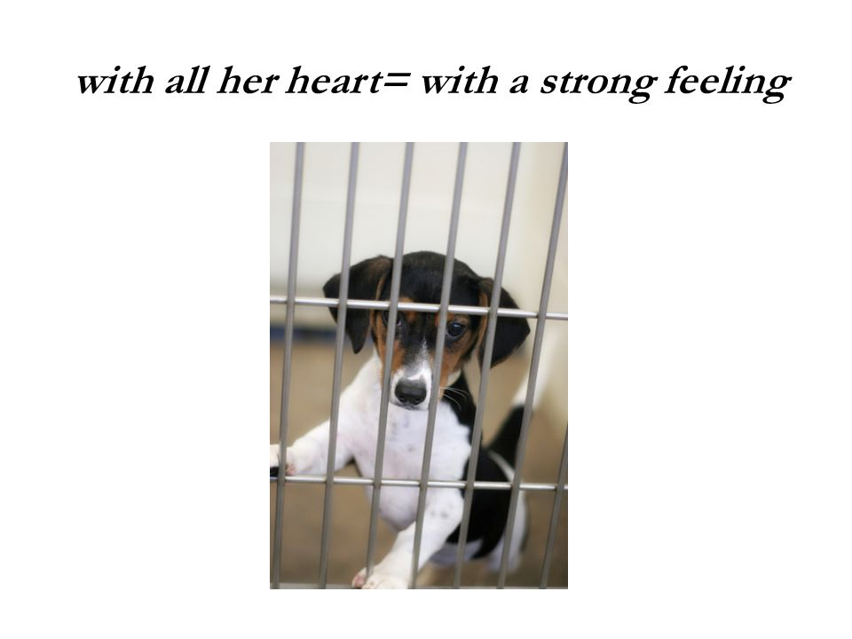 with all her heart= with a strong feeling
