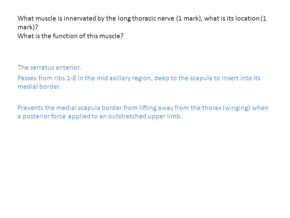 What muscle is innervated by the long thoracic nerve (1 mark), what is its location (1 mark) What is the function of this muscle