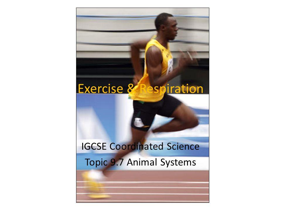 Exercise & Respiration