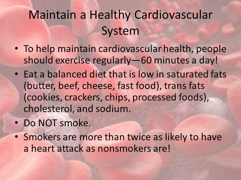 Maintain a Healthy Cardiovascular System