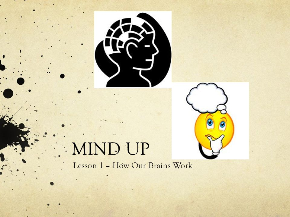 Lesson 1 – How Our Brains Work